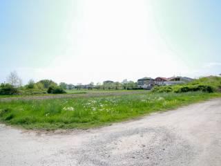 Foto - Terreno agricolo in Vendita a Bosconero
