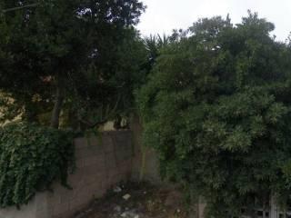Foto - Terreno agricolo in Vendita a Riola Sardo