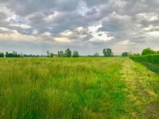 Foto - Terreno agricolo in Vendita a Cellatica