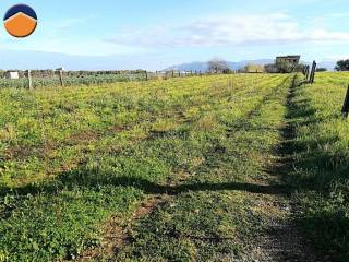 Foto - Terreno agricolo in Vendita a Balestrate