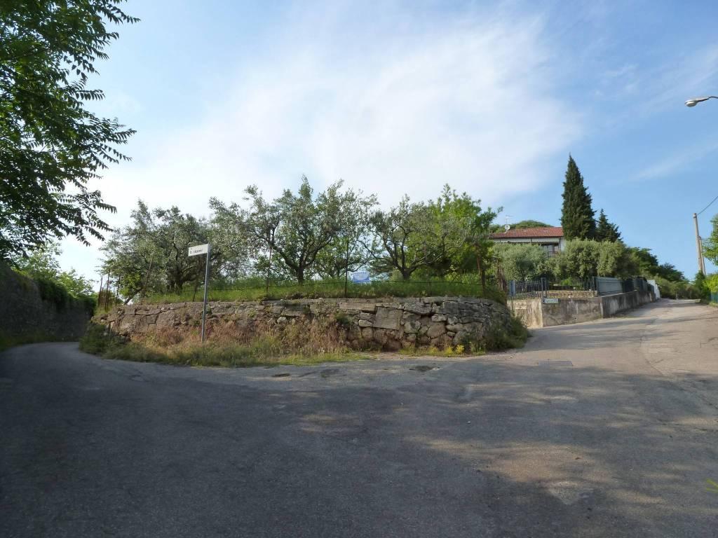 foto  Terreno agricolo in Vendita a Verona