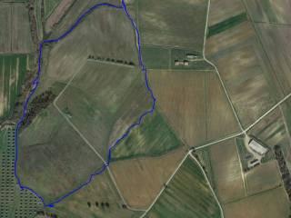 Foto - Terreno agricolo in Vendita a Roccastrada