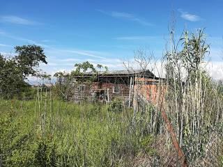 Foto - Terreno agricolo in Vendita a Volvera
