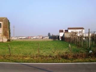 Foto - Terreno edificabile residenziale a Villa Bartolomea