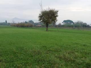 Foto - Terreno edificabile commerciale a Prato