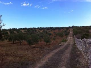 Foto - Terreno agricolo in Vendita a Usini