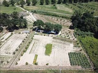 Foto - Terreno agricolo in Vendita a Ascoli Piceno
