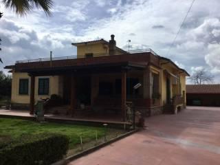 Foto - Villa Strada Provinciale Demanio di Calvi, Pignataro Maggiore