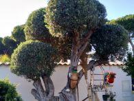 Villa Vendita Agrigento