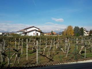 Foto - Villetta a schiera via Arbuscello, Borgo d'Ale
