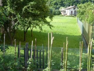 Foto - Terreno edificabile residenziale a Morbegno