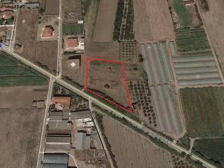 Foto - Terreno agricolo in Vendita a Francolise