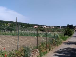 Foto - Terreno edificabile residenziale a Castel Gandolfo