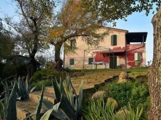Foto - Rustico / Casale, buono stato, 200 mq, Castelplanio
