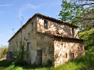 Foto - Rustico / Casale, da ristrutturare, 150 mq, Castelplanio