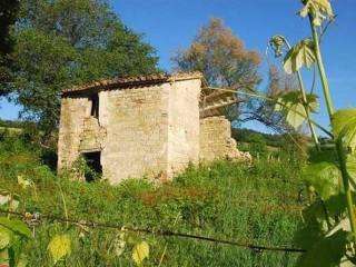 Foto - Rustico / Casale, da ristrutturare, 150 mq, Rosora