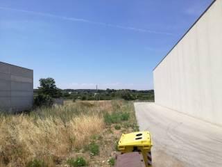 Foto - Terreno edificabile industriale a Putignano