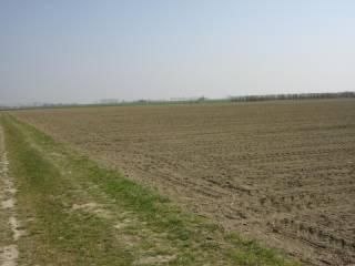 Foto - Terreno agricolo in Vendita a Agna