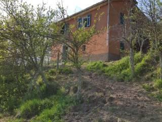 Foto - Casa indipendente Località Buto, Varese Ligure