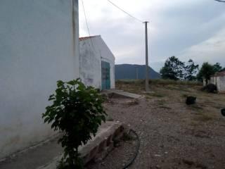 Foto - Terreno agricolo in Vendita a Rotondella