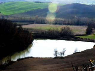 Foto - Terreno agricolo in Vendita a Asciano
