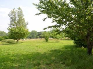 Foto - Terreno agricolo in Vendita a San Lazzaro di Savena