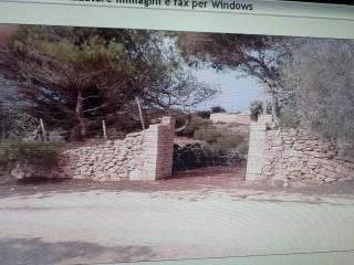 Foto - Terreno agricolo in Vendita a Lampedusa e Linosa