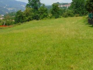 Foto - Terreno edificabile residenziale a Chiampo