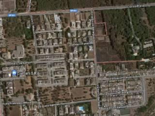 Foto - Terreno edificabile residenziale a Gallipoli