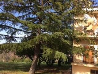 Foto - Casa indipendente via Fontanelle, Poggio Nativo