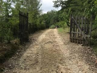 Foto - Terreno agricolo in Vendita a Tarano