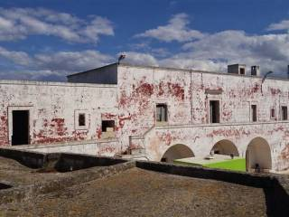 Foto - Rustico / Casale, da ristrutturare, 31000 mq, Fasano