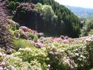 Foto - Trilocale Panoramica Zegna 34, Trivero