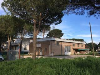 Foto - Terreno edificabile industriale a Castiglione del Lago