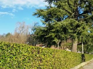 Foto - Terreno edificabile residenziale a Dueville