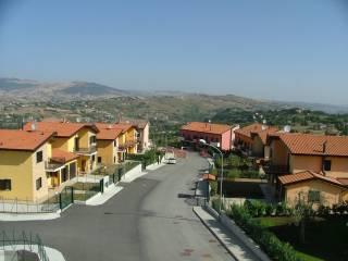Pignola