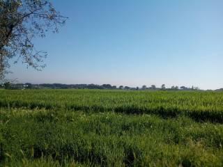 Foto - Terreno agricolo in Vendita a Ardea