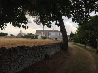 Foto - Rustico / Casale, buono stato, 100530 mq, Noci