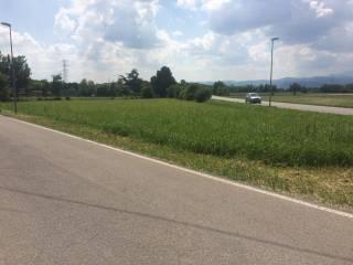 Foto - Terreno agricolo in Vendita a Montecchio Precalcino