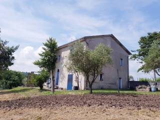 Foto - Rustico / Casale Contrada Spina, Montemiletto