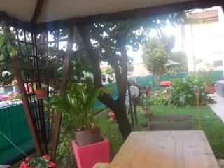 Foto - Appartamento via dell'Artigianato 2, Castelbellino