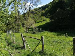 Foto - Terreno agricolo in Vendita a San Godenzo