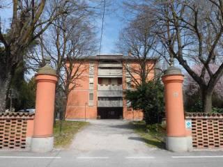 Foto - Trilocale all'asta via Carreggiata 100, San Pietro Capofiume, Molinella