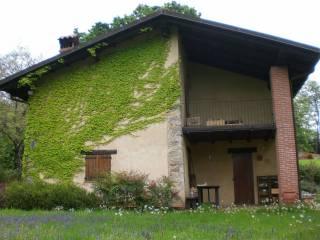 Foto - Villa, ottimo stato, 140 mq, Pettinengo
