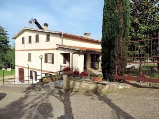 Foto - Villa via Casarino, Passo Corese, Fara in Sabina