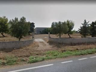 Foto - Terreno edificabile commerciale a Porto Cesareo