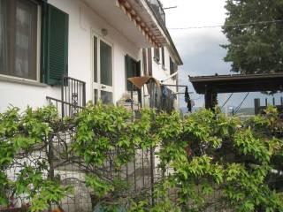 Foto - Rustico / Casale Paoletti, Montefiascone