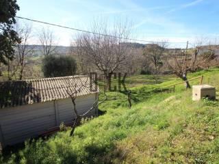 Foto - Terreno edificabile residenziale a Potenza Picena