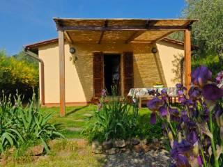Foto - Villa via Calcesana 5, Calci