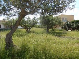 Foto - Terreno agricolo in Vendita a Alcamo